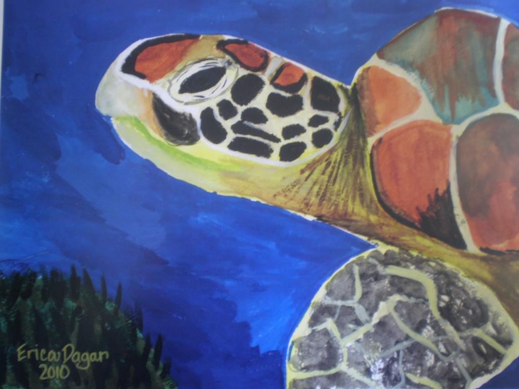 Turtle by Erica Dagar (Student)
