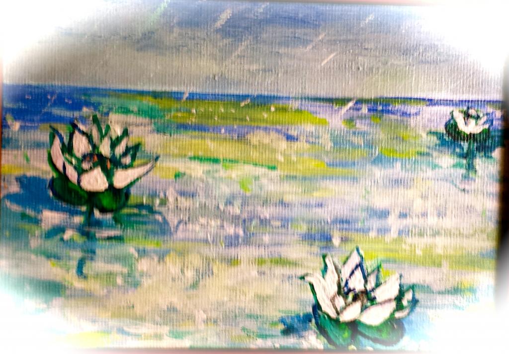 16Waterlilies